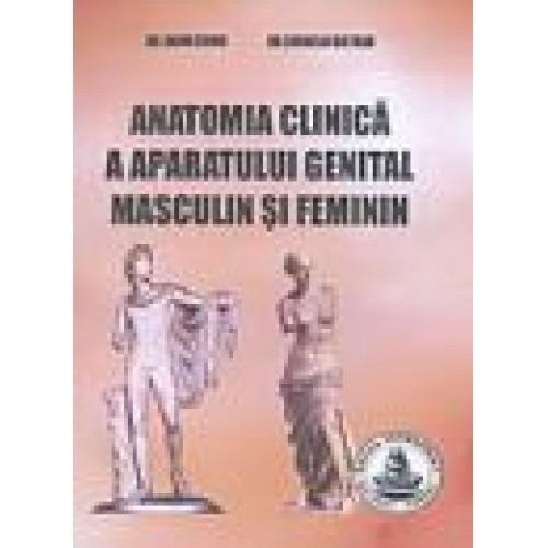 ANATOMIA CLINICA A ORGANELOR GENITALE