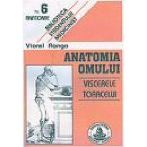 ANATOMIA OMULUI - VISCERELE TORACELUI NR.6